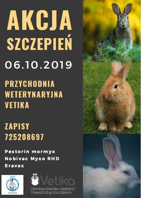 Akcja szczepień królików 2019